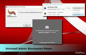 How to Uninstall Adobe Shockwave Player?
