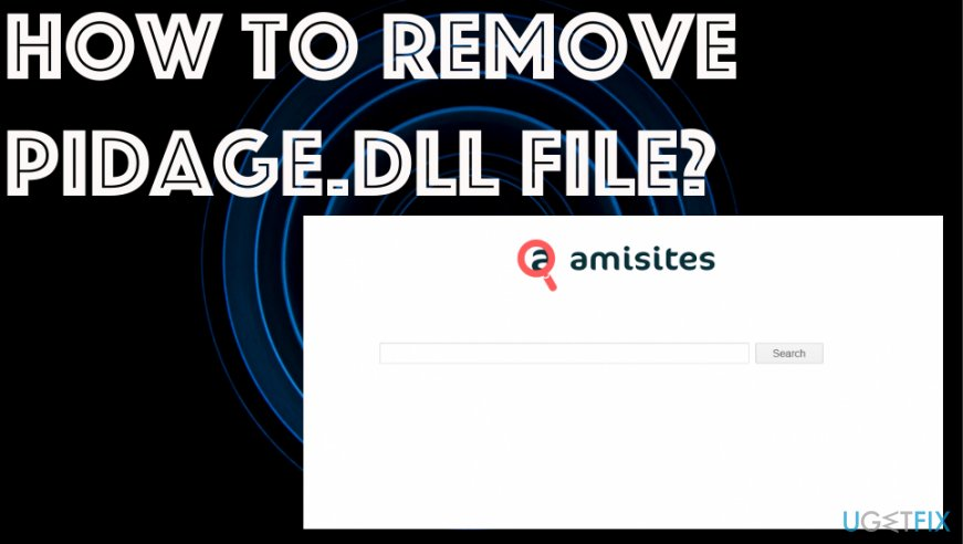 How to remove Pidage.dll File
