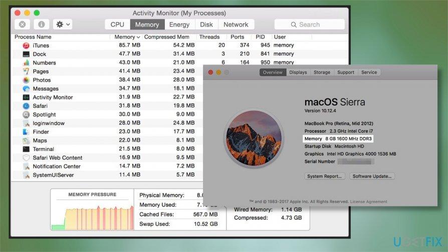 Memory usage of Mac