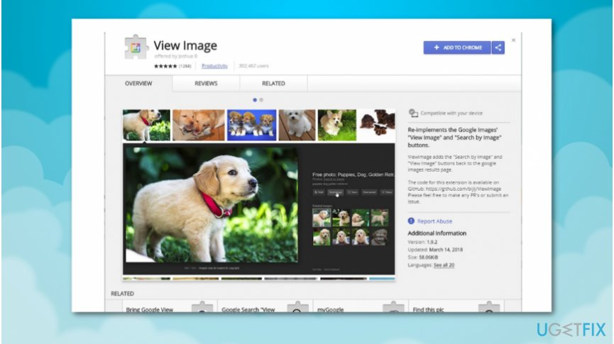 Download View Image extension for Chrome